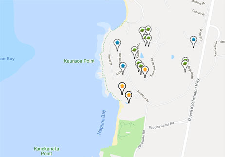 condos, homes and land for sale in Mauna Kea Hawaii