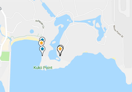 condos, homes and land for sale in Hokuala Hawaii