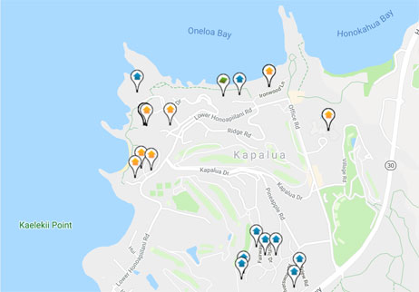 condos for sale in The Coconut Grove on Kapalua Bay